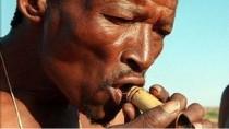 Modern insanların kökeni güney Afrika