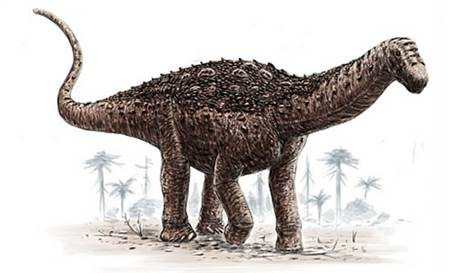 Arjantin'in Rio Negro eyaletinde, dünyanın en büyük dinozor türü olan Sauropodlara ait 7,5 santimetre uzunluğunda bir diş fosili bulundu.