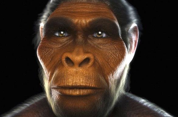 evrim00-2A96-3C87-2B17