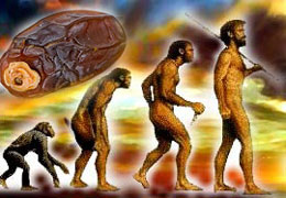 Darwin krizi TÜBİTAK'tan sonra ilahiyatçıları salladı