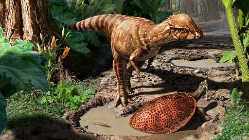 'Kalın kafalı' dinozorların en eskisi