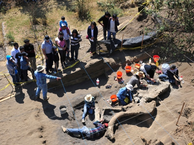 Handout photograph of archaeologists from Mexico's INAH working at an excavation of buried remains of a Columbian mammoth in Mexico City