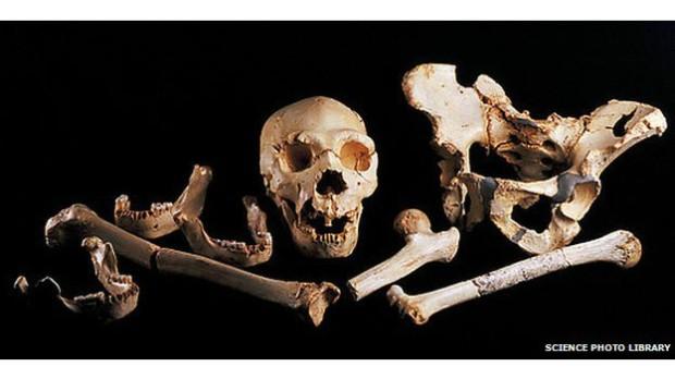 131205131531_pit_of_bones_624x351_sciencepholab_nocredit