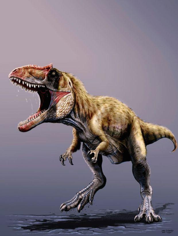 siats-tyrannosauroids-dinosaur_73760_990x742