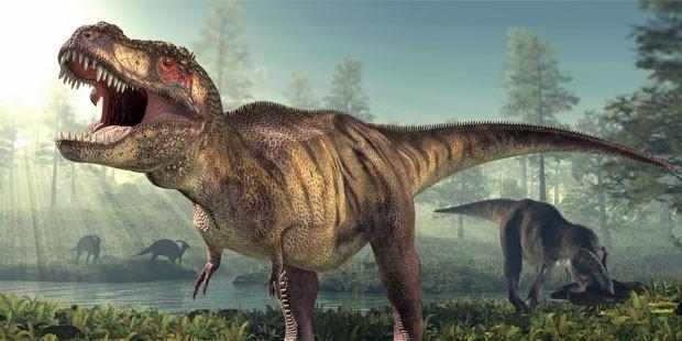 page_dinozorlar-50-milyon-yilda-kusa-donustu_237382763