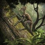 Epidendrosaurus ninchengensis capturing wood worms.